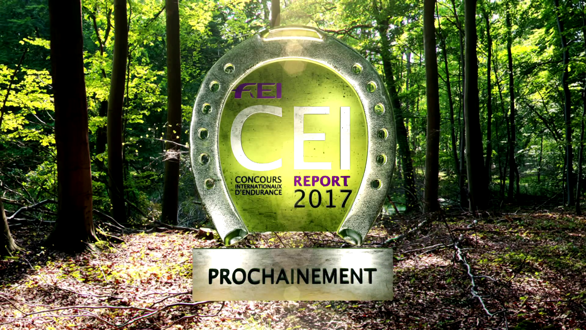 PROGRAMME TV: CEI Report 2017